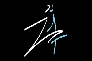 conception logo sportif et dynamique